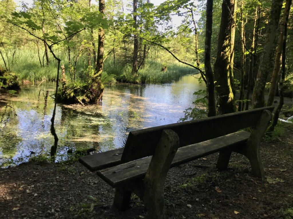 Sieben Quellen Eschenlohe - die Rastbank im Schatten